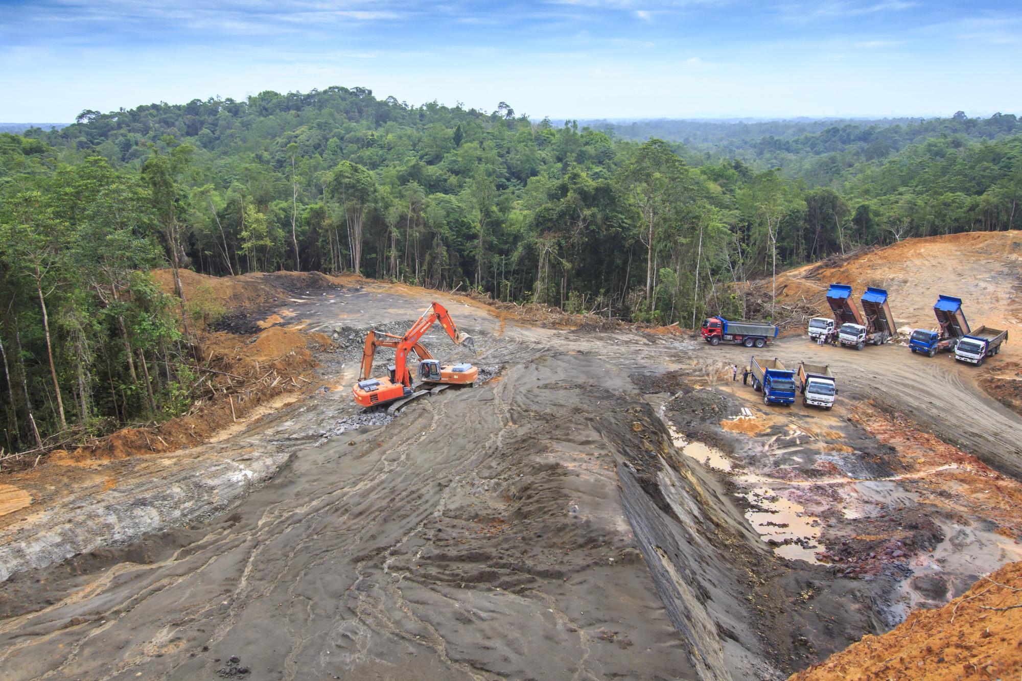 Deforestation-72 ppi