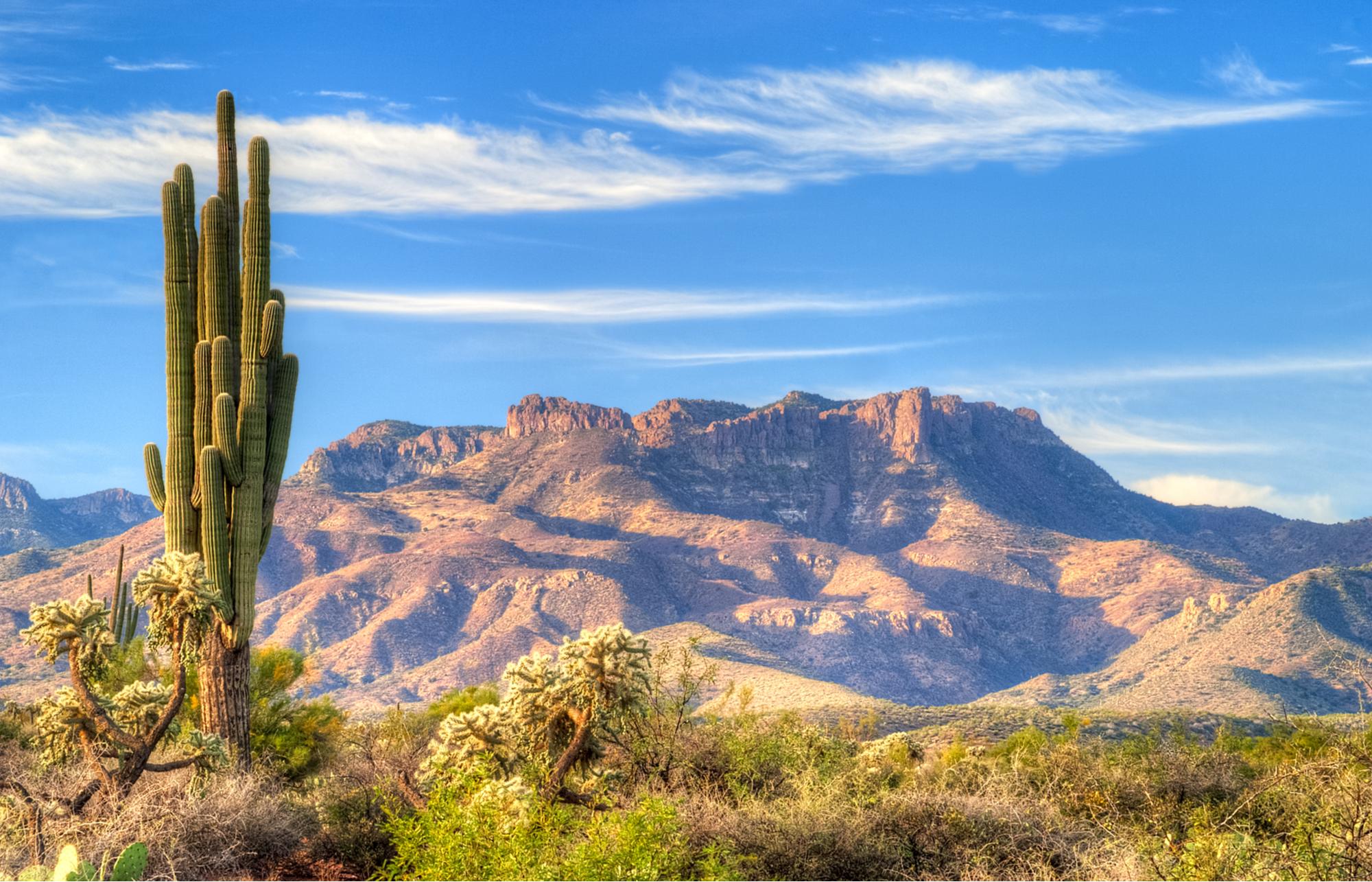 Captura diária dos primeiros raios de soldo deserto de Sonora