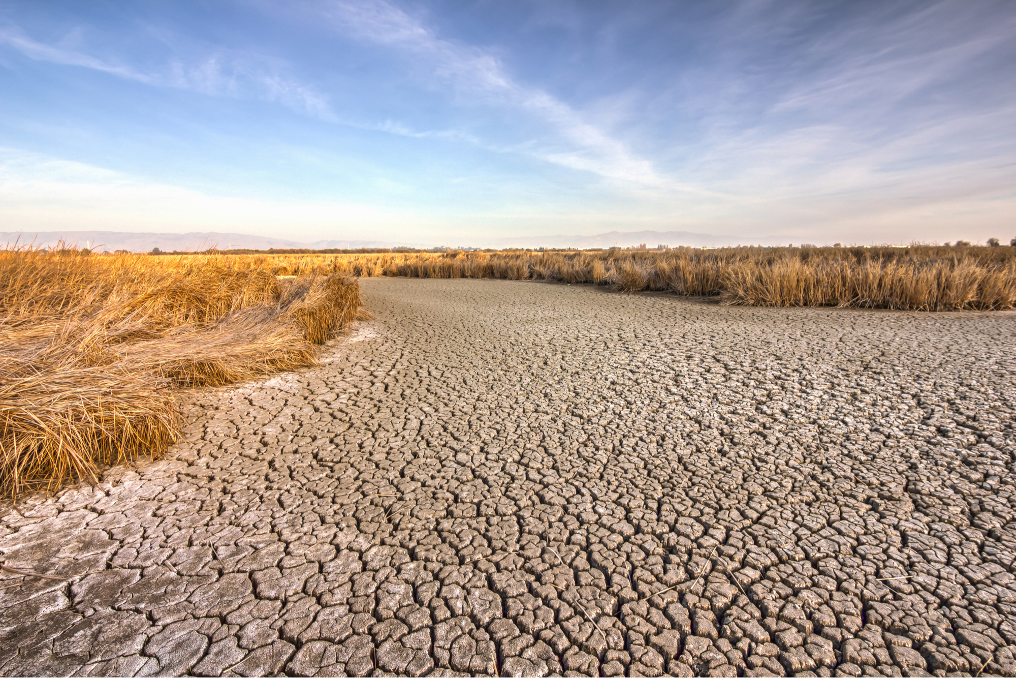 California during a drought