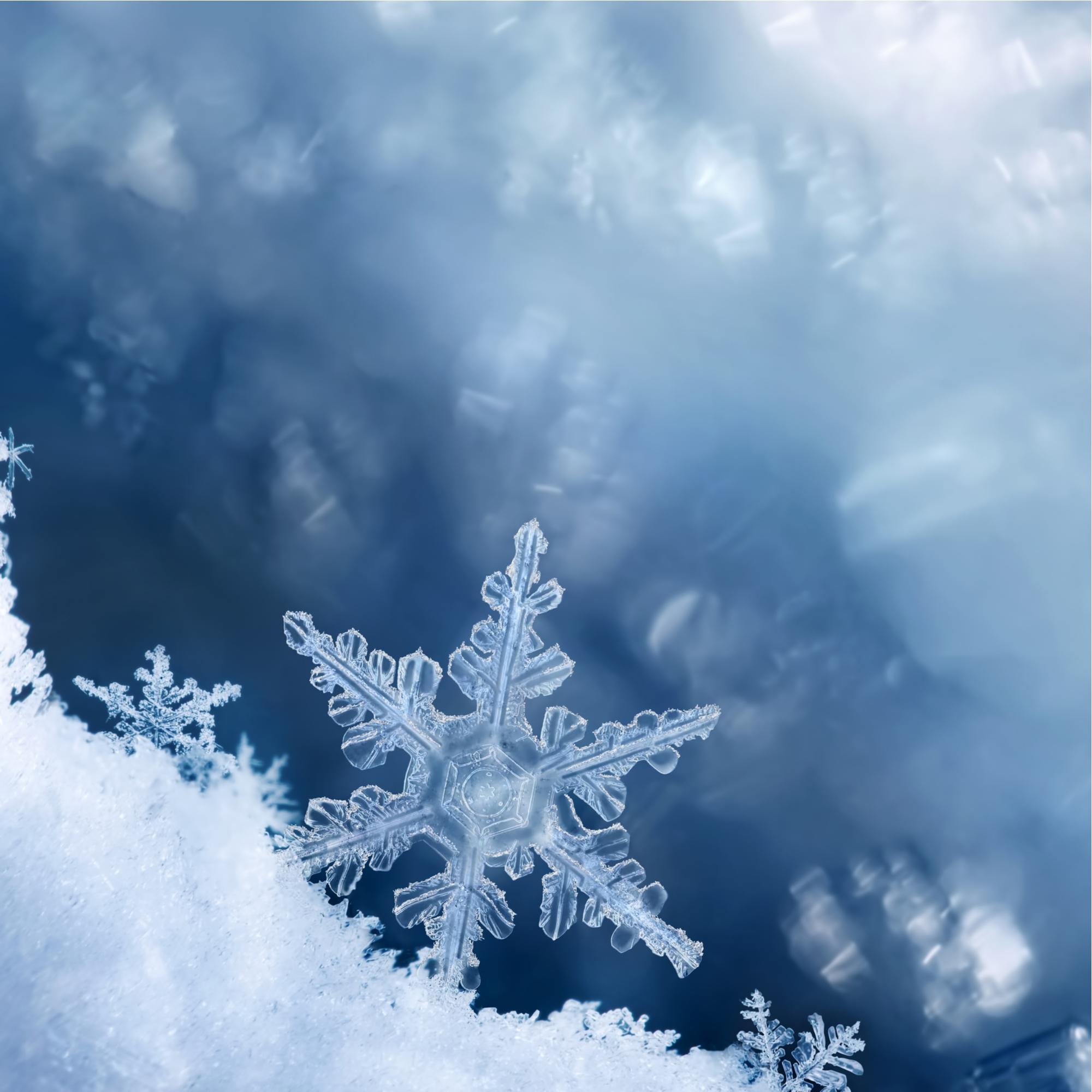 رقاقات الثلج