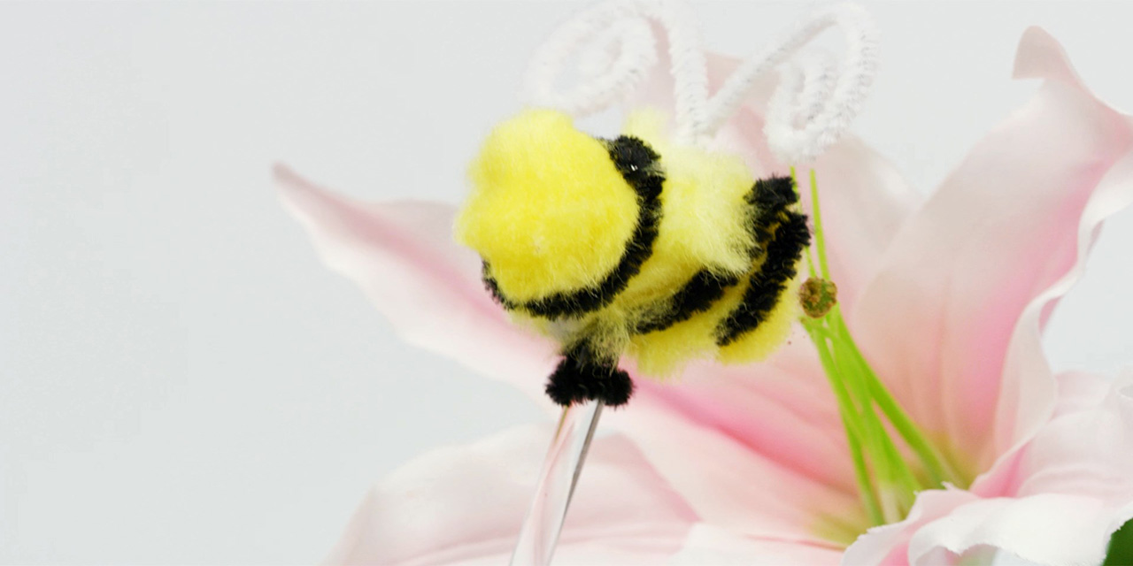 Our bee delivers the pollen to the stigma of the other flower