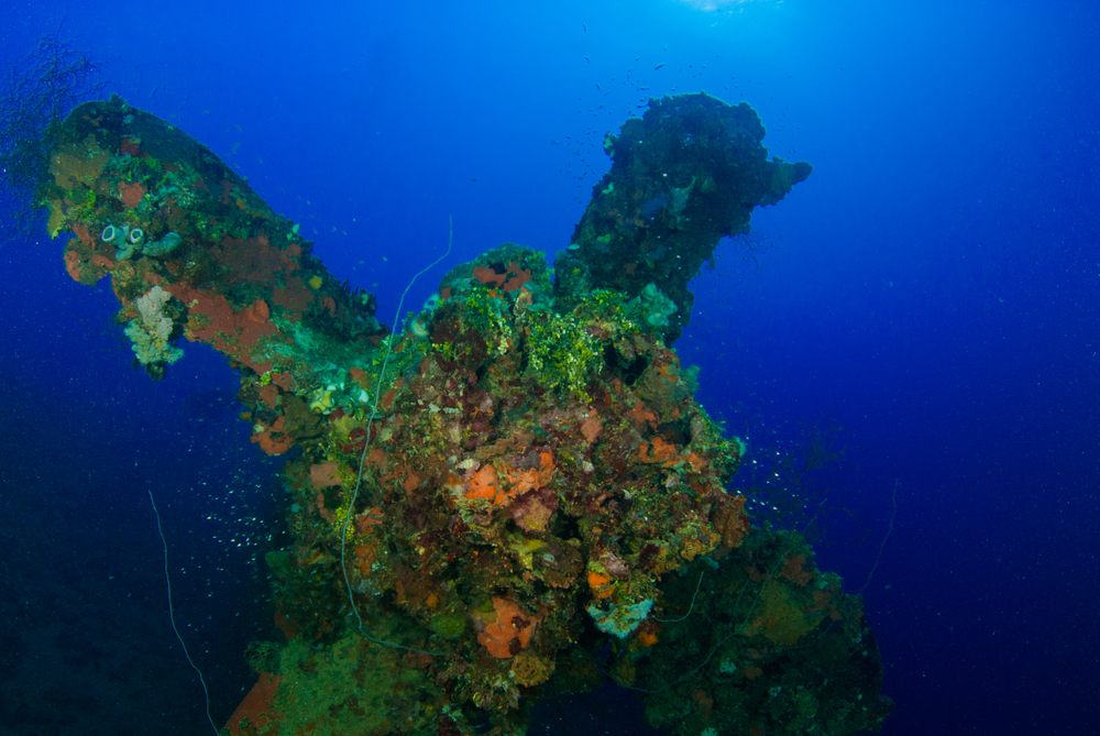 Underwater shot of the sunken ship Heian Maru