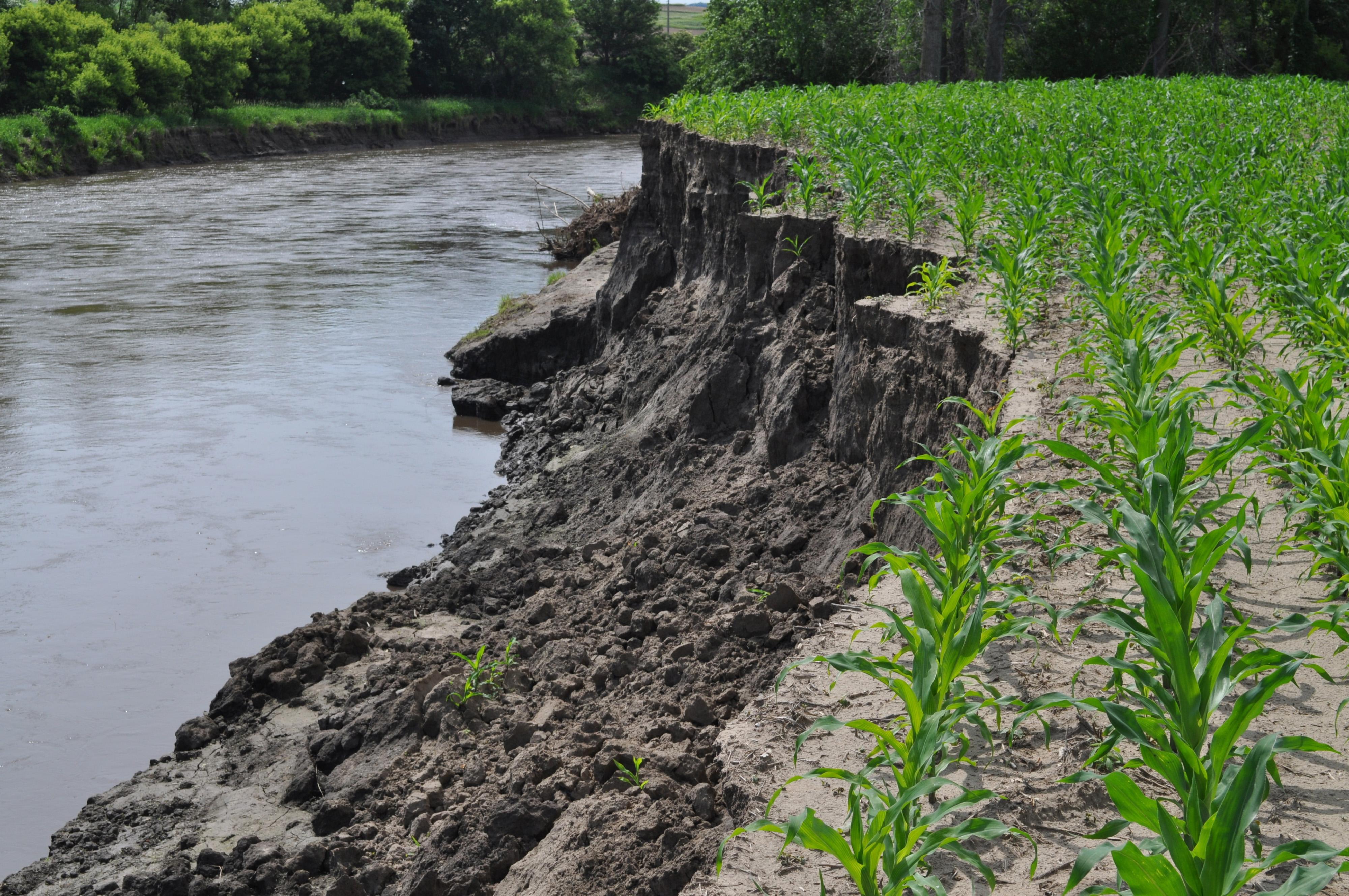 تعرية التربة
