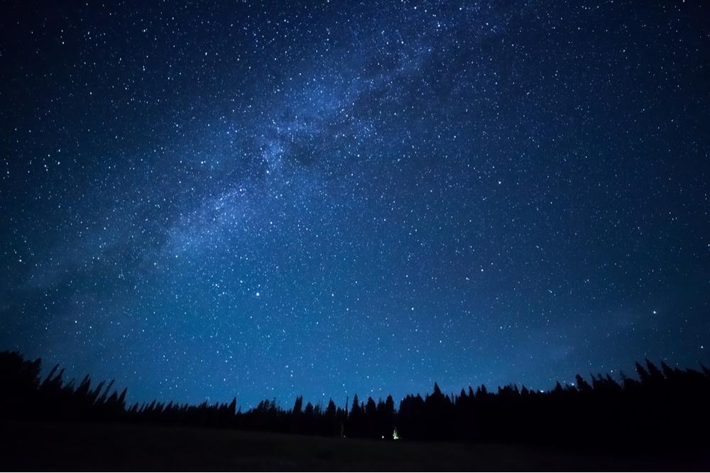 Blue dark night sky with many stars above field of trees